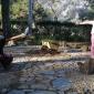Un Tiempo Especial en Villa Rosa
